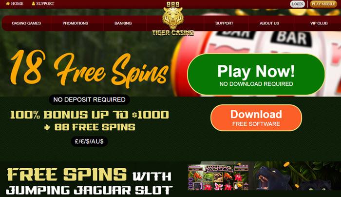 Casino no - 262651