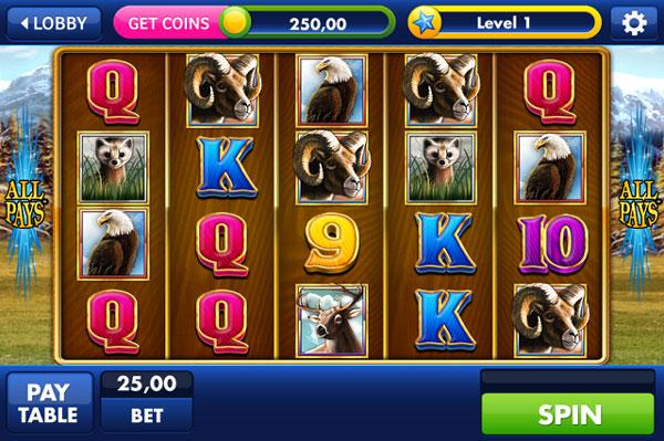 Slots Bonus - 230566