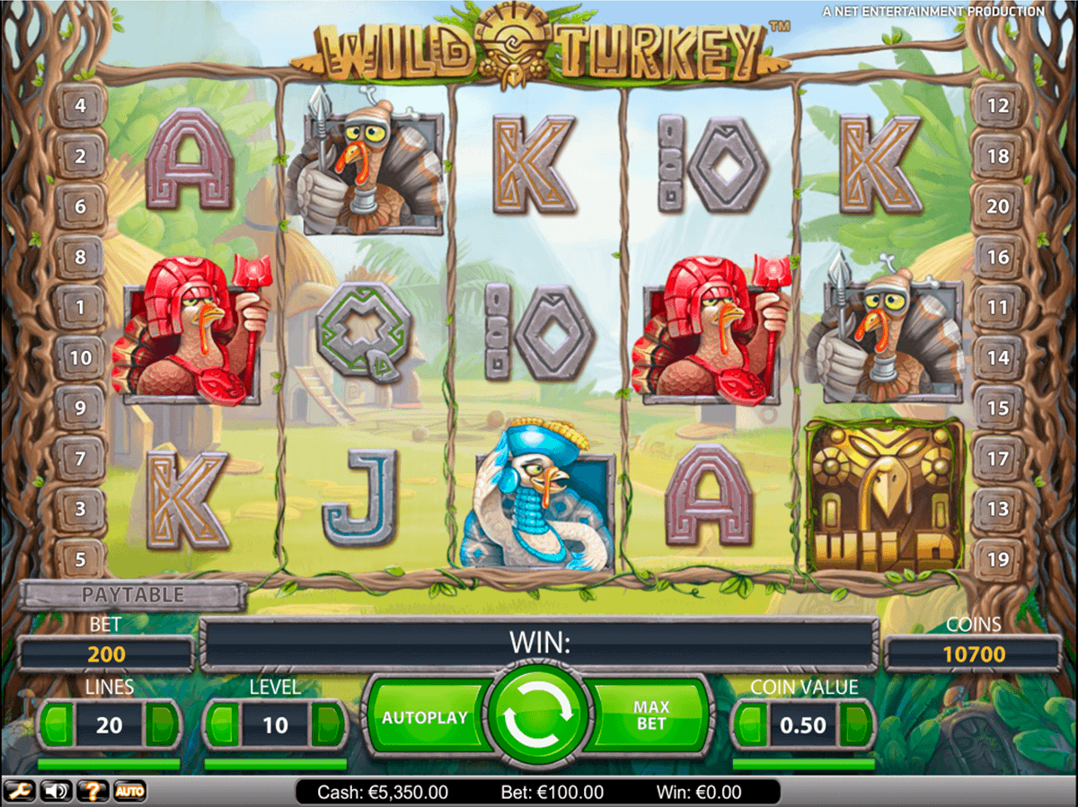Bestes online Casino - 186217