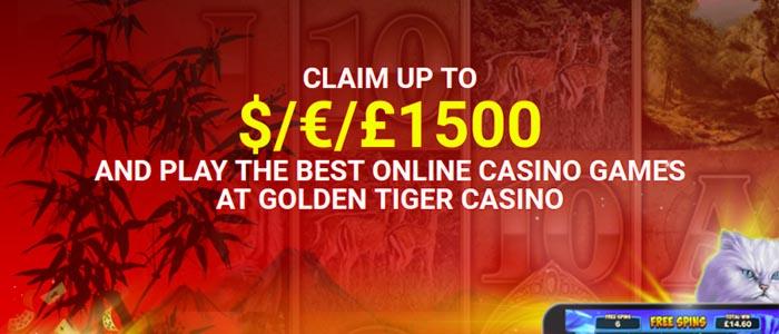 Online Casino - 708800