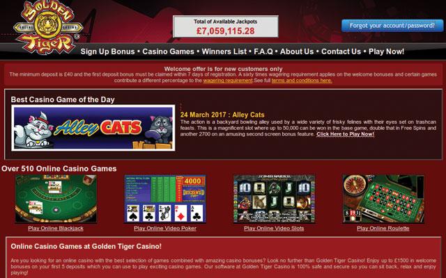 Online Casino - 797610