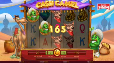 Cash Preise - 171720