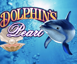 Dolphins Pearl - 560698