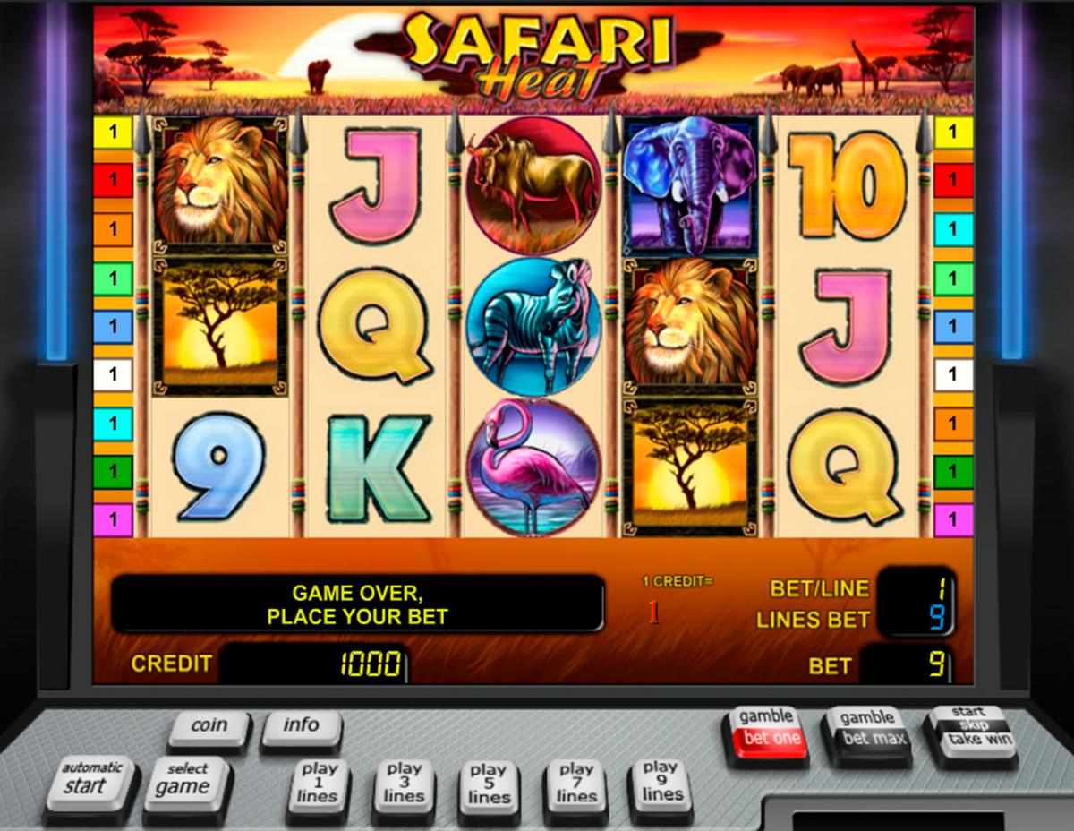 Safari Heat - 618980